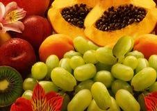 Fruits Stock Image