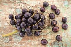 Fruits and acai powde Royalty Free Stock Photos