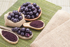 Fruits and acai powder Stock Photography