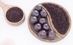 Fruits and acai powder originating from the Amazon Euterpe oleracea Royalty Free Stock Photo