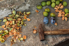 Fruits: almonds, plums, green wallnuts. Almonds cracked with a hammer, plums, green wallnuts royalty free stock images