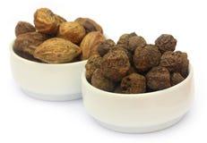 Fruits, Amla et Haritaki d'Ayurvedic Photographie stock