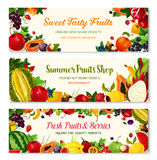 Fruits And Berries Vector Farm Banners Templates Royalty Free Stock Photo