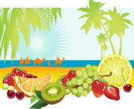 Fruits And Summer. Royalty Free Stock Images