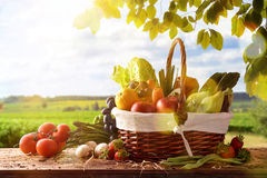 Fruits And Vegetables On Table And Crop Landscape Background Royalty Free Stock Photo