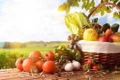 Fruits And Vegetables On Table And Crop Landscape Background Lat Royalty Free Stock Images