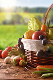 Fruits And Vegetables On Table And Crop Landscape Background Vertical Royalty Free Stock Photos