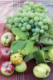 Fruits, aples and grapes Stock Photography