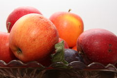 Fruits8. Apple  apples  fall  fresh  fruits  health juice  pear  plum  plums  vitamins Royalty Free Stock Photography