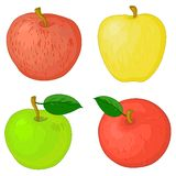 Fruits, apples. Fruits, set sweet raw various apples with green leafs Royalty Free Stock Image