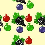 Fruits - apples, grapes, pomegranate, figs. Seamless pattern. Fruits - apples, grapes, pomegranate, figs Seamless pattern Light greenbackground Stock Photography