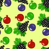 Fruits - apples, grapes, pomegranate, figs. Seamless pattern. Fruits - apples, grapes, pomegranate, figs Seamless pattern Light green background Royalty Free Stock Images