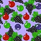 Fruits - apples, grapes, pomegranate, figs. Seamless pattern. Fruits - apples, grapes, pomegranate, figs Seamless pattern Violet background Royalty Free Stock Image