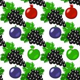 Fruits - apples, grapes, pomegranate, figs. Seamless pattern. Fruits - apples, grapes, pomegranate, figs Seamless pattern White background Stock Photos