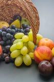Fruits arrangement Stock Image