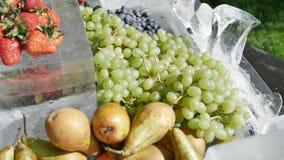 Fruits assortis de restauration de fruit sur la poire de cerise de myrtilles de raisins de fraises de pêches d'abricots de glace  clips vidéos