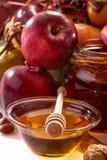 Fruits of autumn Royalty Free Stock Photos