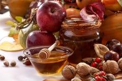 Fruits of autumn Royalty Free Stock Image