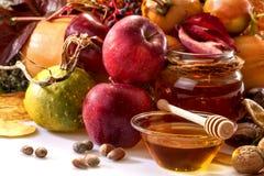 Fruits of autumn Stock Image