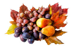 Fruits and autumn leaves isolated Royalty Free Stock Photography