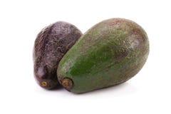 Fruits of avocado isolated on white background Stock Photography
