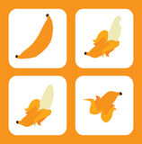 Fruits banana design Stock Photos