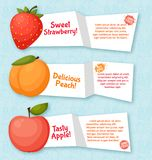 Fruits banners set. Colorful template for cooking Stock Image