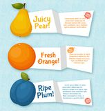 Fruits banners set. Colorful template for cooking Royalty Free Stock Photo