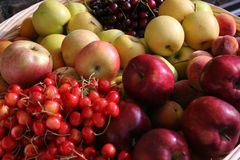 Fruits in the basket Stock Photo