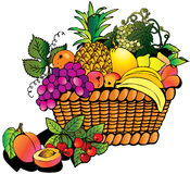 Fruits With Basket Royalty Free Stock Images