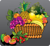 Fruits with basket. Royalty Free Stock Image