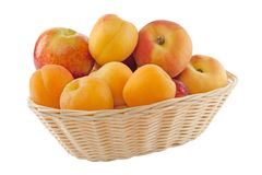Fruits in basket with hand made clipping path Stock Photos