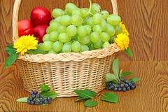 Fruits basket Stock Images