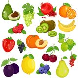 Vector flat design fruits and berries icon set. Fruits and berries in cartoon style. Great set for your design. Isolated white background Royalty Free Stock Image