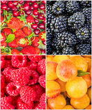 Fruits and berries. Collage. Royalty Free Stock Image