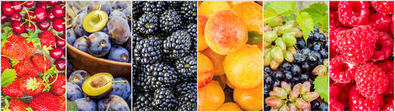 Fruits and berries. Collage. Stock Image