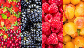 Fruits and berries. Collage. Stock Photo