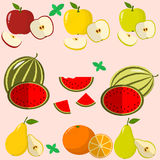 Fruits and berries collected in a set. stock illustration