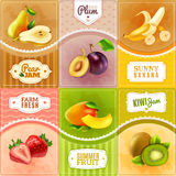 Fruits Berries Flat Icons Composition Poster vector illustration
