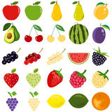 Fruits and berries are a great set Stock Images