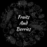 Fruits and Berries Hand Drawn Round Vector Set Stock Photos