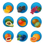 Fruits and berries icon set Royalty Free Stock Photos