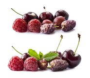 Fruits and berries isolated on white background. Ripe raspberries, cherries, gooseberries, and mulberries. Background of mix fruit. S with copy space for text Royalty Free Stock Images