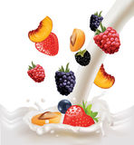 Fruits and berries in milk Stock Photo