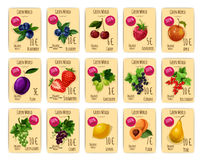 Fruits and berries on price or sale tag, card Royalty Free Stock Image