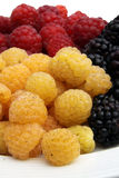 Fruits and berries raspberries Royalty Free Stock Photography
