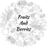 Fruits and Berries Round Set. Hand drawn outline round set with berries and fruits isolated Royalty Free Stock Image