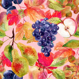 Fruits and berries seamless pattern Royalty Free Stock Photography