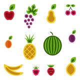 Fruits and berries set. Stock Images