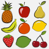 Fruits and berries. Set of fruits and berries in a drawing style Stock Image